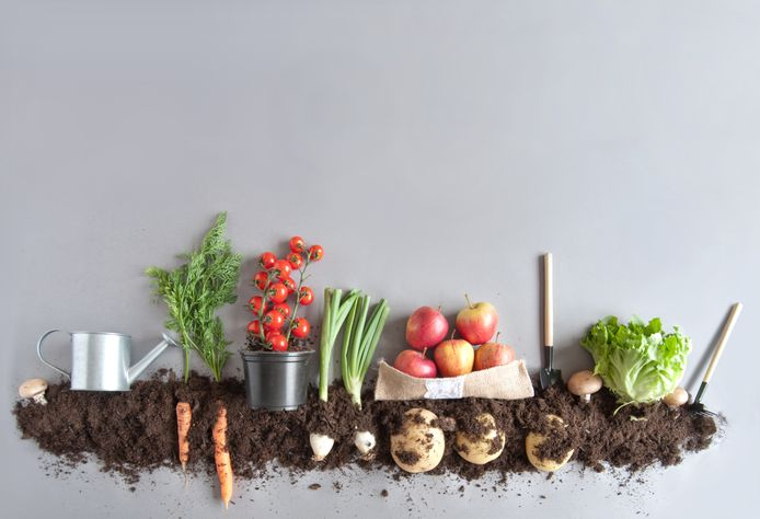Blog: waarom biologisch eten goed is voor mens & natuur